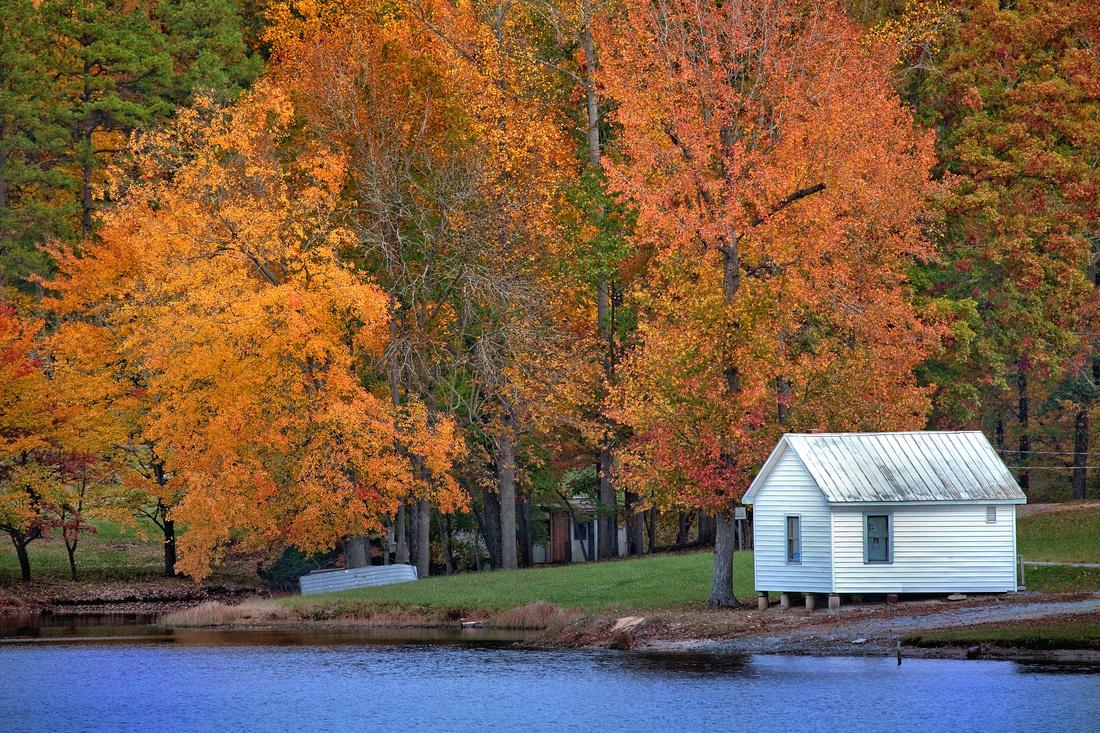Dawson's Pond